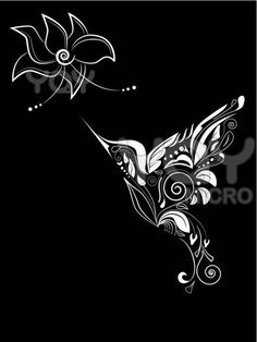 Image detail for -Royalty Free Vector of Hummingbird