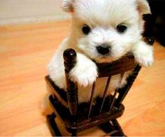 In the Time Out chair  It was just a little wee wee....why such harsh punishment?