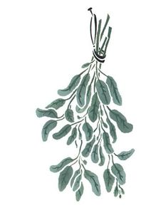 Hanging Sage Herbs Wall Stencil by DeeSigns
