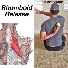 Rhomboid Release👌🏻👌🏻[between the shoulder blades] - Do you have TENSION right on the inside part of the shoulder blades? Give this release… Shoulder Pain Relief, Neck Pain Relief, Neck And Shoulder Pain, Neck And Back Pain, Shoulder Pain Exercises, Neck Exercises, Scoliosis Exercises, Rhomboid Exercises, Trigger Point Therapy