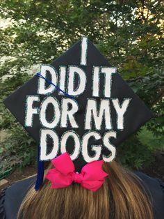 Vet graduation cap