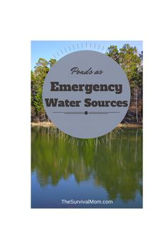 Ponds of all sizes and in all locations can be an emergency water source. Here are tips for building your own pond emergency water source. Survival Supplies, Survival Food, Survival Prepping, Survival Skills, Survival Hacks, Survival Shelter, Emergency Supplies, Survival Stuff, Survival Equipment