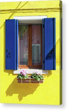 Blue and yellow window Acrylic Print for sale. House facade in Burano, Venice, Italy: Yellow wall and window with blue shutters, lovely pink flowers. The image gets printed directly onto the back of a sheet of clear acrylic. The image is the art - it doesn't get any cleaner than that! Matthias Hauser - Art for your Home Decor and Interior Design.