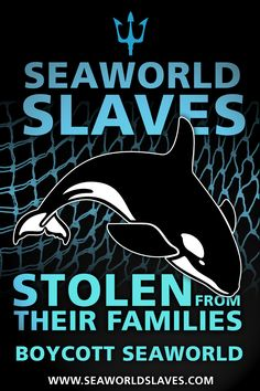 Let us all boycott the disturbingly cruel 'entertainment' that is Seaworld and do our part to not allow this to go on any longer, for the sake of the animals and our posterity. Visit Seaworldslaves.com for more information