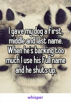 I gave my dog a first, middle and last name. When he's barking too much I use his full name and he shuts up.