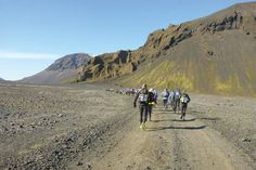 Racing the plant: Iceland is one of the toughest endurance races in the world. Running To Stand Still, Iceland, Swimming, Plant, Racing, Adventure, World, Travel, Inspiration