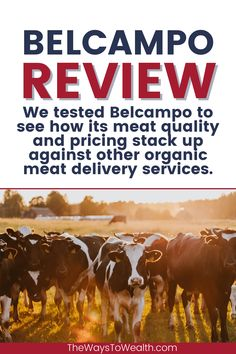 We tested Belcampo to see how its meat quality and pricing stack up against other organic meat delivery services. Organic Meat Delivery, Meat Delivery Service, Braised Pork Shoulder, Ground Lamb, Frugal Living Tips, Budgeting Tips, Pork Belly, Money Saving Tips, Wealth