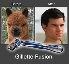 Funny Twilight Taylor Lautner Jacon Black Before After Joke Picture - Gillette Fusion Advert Funny Images, Funny Photos, Hilarious Pictures, Funny Videos, Funniest Photos, Funniest Things, Funny Things, Gillette Fusion, All Meme