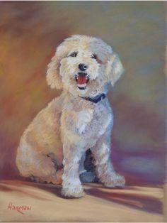 portrait commission; pastel 'Oudles' 25 x 19 inches. sold.