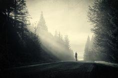 Light / Rays by d o l f i, via Flickr | silhouette + road trees haze + black tan