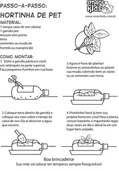 Resultado de imagem para atividades com plantas medicinais para educação infantil