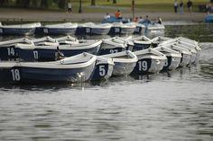Hyde Park Rowboats