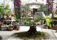 beautiful garden shop