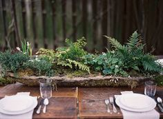 Stunning idea. Make This Rustic Mossy Concrete Centerpiece — Once Wed