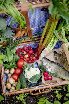Foto: Marthaförbundet, Karin Lindroos Healthy Recipes, Healthy Food, Green Beans, Vegetables, Drinks, Healthy Foods, Drinking, Beverages, Healthy Eating Recipes