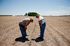 SPRING SOW: Farmer Bill Maupin, left, conferred with landowner Norman Sandelbach while inspecting freshly planted corn seeds in a field outside of Henry, Ill., on Tuesday. (Daniel Acker/Bloomberg)