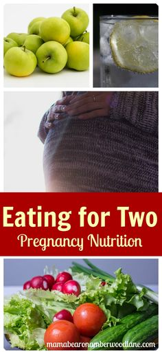 Preparing for baby and pregnancy tips: Eating for Two: Pregnancy Nutrition - Mama Bear