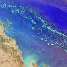 El gobierno de Australia aprueba un vertido de residuos cerca de la valiosa Barrera de coral