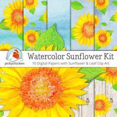 Watercolor Sunflower Digital Paper & Clip Art kit sunflower clipart wood…