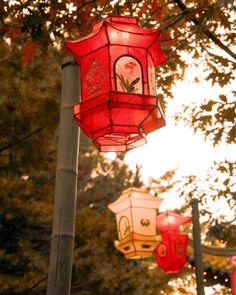 Chinese lanterns red yellow paper lanterns autumn by gbrosseau