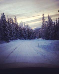Norwegian winter wonderland❤️