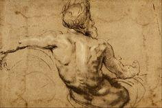 Study of a River God - Sir Peter Paul Rubens.