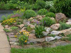 grüne und gelbe pflanzen für einen steingarten - 53 erstaunliche Bilder von Gartengestaltung mit Steinen
