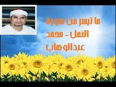 ما تيسر من سورة النمل   محمد عبدالوهاب  الطنطاوي