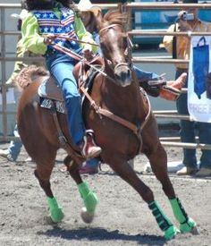 This article explains how to train a horse for barrel racing. Barrel Racing Tips, Barrel Racing Horses, Barrel Horse, Horse Riding Tips, Horse Tips, My Horse, Riding Gear, Horse Training, Training Tips