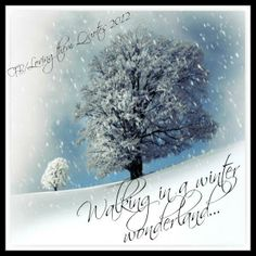 Quotes On Images » All Quotes On Images » Walking In A Winter