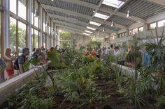 Beautiful sewage treatment building attracts visitors from all over the world - omega center for sustainable living NY