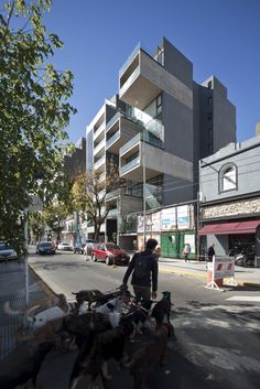 Image 10 of 14 from gallery of Building Dorrego 1711 / Dieguez Fridman. Courtesy of Dieguez Fridman arquitectos