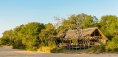 Rhino Post Safari Lodge - Luxury lodge in Kruger Park. View information, pictures and book great deals online! Game Lodge, Lodges, Great Deals, Safari, African, Cabin, Adventure, Park, Luxury