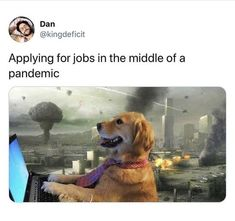 Some Funny Memes That Made Our Week - We Should Be Working True Memes, Stupid Funny Memes, Funny Relatable Memes, Haha Funny, Dankest Memes, Funny Stuff, Funny Laugh, Pretty Meme, Me Too Meme