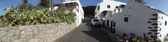 Cactus daylight fuerteventura streets villages (4800x1232, daylight, fuerteventura, streets, villages)  via www.allwallpaper.in
