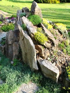 small garden (With images) Rockery Garden, Succulents Garden, Garden Plants, Japanese Rock Garden, Rock Garden Design, Alpine Garden, Front Yard Landscaping, Landscaping With Boulders, Dream Garden