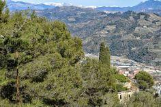 Alpi Marittime (tra cui il Saccarello), Perinaldo (IM), Baiardo (IM), torrente e Val Nervia, Camporosso (IM) 1 nota