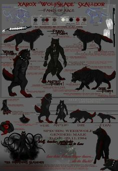 Character sheet Xarox by Dalkur on DeviantArt Anime Furry, Anime Wolf, Fantasy Creatures, Mythical Creatures, Werewolf Name, Legends And Myths, Wolf Wallpaper, Vampires And Werewolves, Classic Monsters