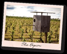 The Region - Harney Lane Winery