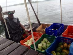 The veggie boat on a rainy day