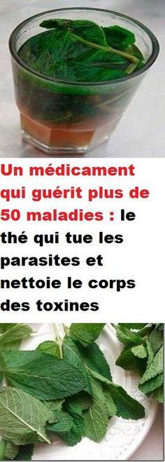 Un médicament qui guérit plus de 50 maladies : le thé qui tue les parasites et nettoie le corps des toxines