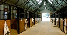 Coolmore stables