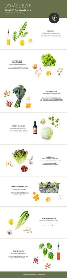 The Loveleaf Guide to Salad Greens | Confused over which salad greens to buy? Our guide to salad greens takes you through the flavor and pairings of our essentials. | Vegan, gluten free, paleo, and vegetarian. | Click for guide. | Via Loveleaf Co.   http://www.loveleafco.com/guide-to-salad-greens/