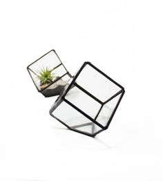 Small Terrarium Holder  Cube style glass container by GlimpseGlass, $35.00