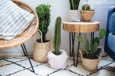 A Pair & A Spare | 3 Easy Planter Ideas (When You're Too Lazy To Repot!)
