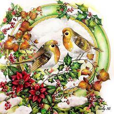 Johannas Christmas Birds Colored By Shirley Tutopia Johannaschristmas Johannabasford