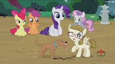 #1429978 - apple bloom, cutie mark crusaders, forever filly, rarity, ripley, safe, scootaloo, screencap, spoiler:s07e06, sweetie belle, zippoorwhill - Derpibooru - My Little Pony: Friendship is Magic Imageboard