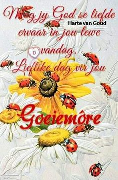Goeie More, Afrikaans Quotes, Good Morning Wishes, Morning Quotes, Poems, Barbie, God, Garden, Inspiration