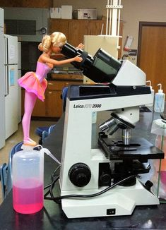 Barbie Loves Microbes -   Barbie is checking out bacteria in the microbiology lab.