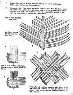 Coconut Weaving Loom Knitting, Palms, Baskets, Diy And Crafts, Weaving, Coconut, Culture, Loom, Hampers